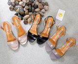 Talloni spessi dei sandali della punta di pigolio delle donne