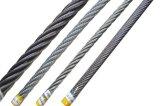 직류 전기를 통한 철강선 밧줄 건조한 권선 패킹