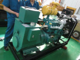 Lvhuan 50Hz 200kw 디젤 엔진 발전기 세트 가격