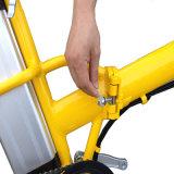 라이트급 선수 20 인치 Foldable 전기 자전거 (RSEB-441)