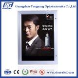Горячее сбывание: Водоустойчивое напольное lockable СИД светлое Box-YGW52