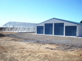 SGS Approved Excellent Steel Structure in cost -Effective (l-s-004)