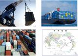 Части препровождения перевозки и вспомогательное оборудование моторных транспортов к двери США DDP/DDU к двери