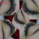 Échantillon gratuit 100% Mink 3D Hair Eyelash Cils naturels