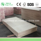Contenitore Plywood/Plywood per Vans