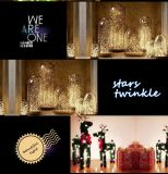 USB LED Copper String Lights per la camera da letto Party Wedding Lighting di Indoor Outdoor