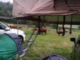 オフロード4WD屋外のキャンプのおおい車の屋上のテント