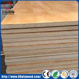 Muebles Marinos Grado E1 E2 Pegamento 100% Madera Contrachapada de Eucalipto
