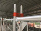 2100mm x 2400mm ont galvanisé les panneaux provisoires de frontière de sécurité