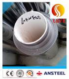 La bande/courroie d'acier inoxydable a galvanisé la bobine en acier