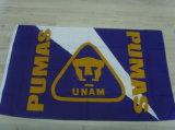 Festival Publicidade Decoração Esportes Bandeira Banner Exterior (0034)