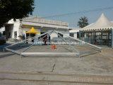 Tienda temporal de la reunión del PVC de 50 personas de la tienda incombustible del hexágono