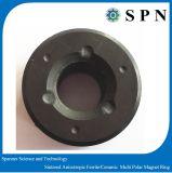 Anelli multipolari del magnete sinterizzati ferrito permanente