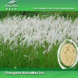 10:1 Herbe-Blanc laineux naturel d'extrait de 100%, 20:1 ; 99% Cylindrin