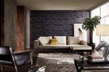 Nuovo sofà domestico elegante moderno del tessuto del salone della mobilia impostato (HC8103)