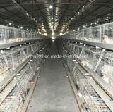 دواجن يغذّي صاحب مصنع [ه] نوع طبقة دجاجة قفص [فرم قويبمنت] لأنّ [شكن هووس]