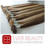 Prolonge malaisienne de cheveu de la vente 100% d'extrémité chaude des cheveux humains V