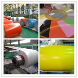Galvalume Steel Coil für Roofing Sheet, Designer PPGI und Colorful Steel Coil, Prime PPGL Steel Coils Sheets