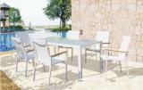 أثاث لازم حديث مدنيّ خارجيّة حديقة فناء يتعشّى مجموعة مع 6 قطعة بيضاء مقلاع شبكة كرسي تثبيت وزجاج طاولة