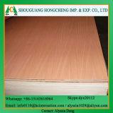 Contre-plaqué de fantaisie utilisé par meubles ignifuges de la pente HPL pour le matériau de construction avec le certificat de la CE