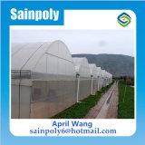 Invernadero de la Plástico-Película de la alta calidad para las flores