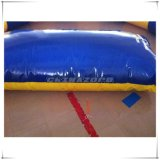 Выполненный на заказ раздувной шарик Aqua с печатание логоса