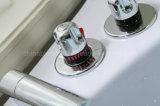 Banho quente branco da massagem da venda do ABS econômico (BLS-8328)