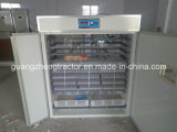 Chicken et Birds automatiques Egg Hatcher/Poultry Egg Incubator 88eggs à 50688eggs