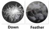 Het vaste Hoofdkussen van de Hals van het Hoofdkussen van de Veer van de Eend van het Hoofdkussen van de Hoekplaat Witte Natuurlijke