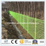 Reticolato saldato galvanizzato della rete fissa ricoperto PVC della rete metallica