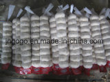 Piccolo sacchetto fresco che imballa aglio bianco puro