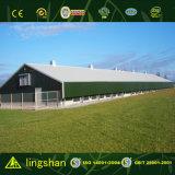 Casa modular prefabricada del ahorro de costes para la granja de pollo