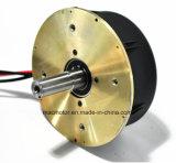 Безщеточный мотор травокосилки мотора DC (M12980-1)