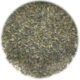 Grüner Tee Op3