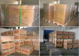 De Hoogste ZonneBatterij van uitstekende kwaliteit 12V200ah van de Verkoop