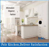 Combineer Keuken van het Meubilair van het Vernisje en van de Lak de Moderne