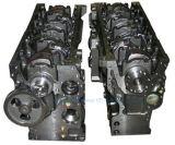 Original/OEM Ccec Dcec Cummins Engine Ersatzteil-Kurbelwelle