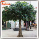 Árbol artificial imperecedero al por mayor del Ficus del Banyan de China