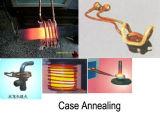 Macchina termica di induzione per la strumentazione di ricottura del metallo