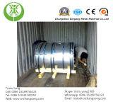 Bobina/strato d'acciaio galvanizzati preverniciati (PPGI, PPGL)