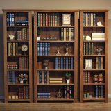 Bibliothèque en bois solide de chambre à coucher d'enfants de modèle moderne (GSP9-033)