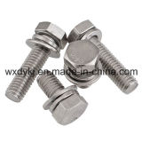 Acier inoxydable A2-70 Hexagon Cap Screw and Flat Washer Assemblies