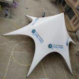 Fördernde Stern-Farbton-Zelte für Verkauf