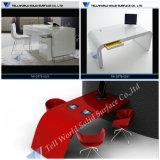 Luxuriöser Entwurfs-moderner Arbeitsplatz-Büro-Schreibtisch für Personal Coumputer Tisch