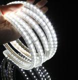 Luminosité de prix usine intense 3528 bandes de joint de PVC
