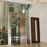 Ascenseur d'intérieur de petite de Carbin de construction maison en verre de passager