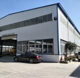 Fabrik-direkter Verkauf/Wasserstrahl-/Plasma-Laser/Ausschnitt-Maschine