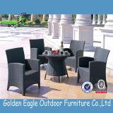 Meubles de rotin avec les meubles extérieurs de balcon de coussins