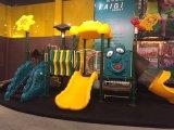 Cour de jeu extérieure en plastique animale de LLDPE pour les jeux d'enfants/matériel extérieur de /LLDPE de matériel de cour de jeu pour des parcs d'attractions