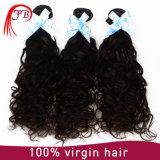 Extensão natural do cabelo da onda do Virgin brasileiro não processado